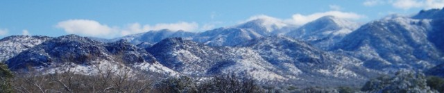 cropped-chiricahuas-in-snow-2-21-13.jpg