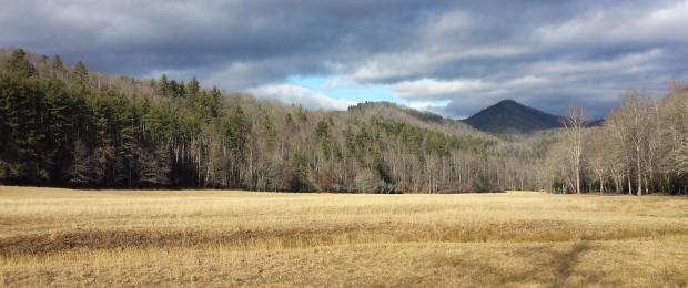 Cataloochee Valley